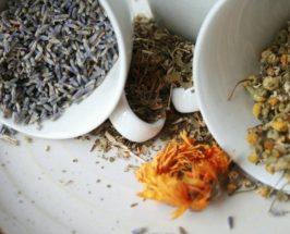 DIY Anti-Aging Beauty Tea