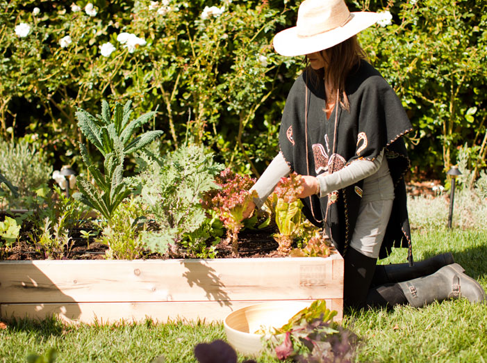 Garden To Kitchen With The Chalkboard: Leanne Citrone