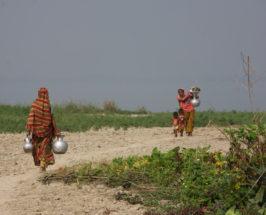 Women of Bangladesh: Development Through Savings