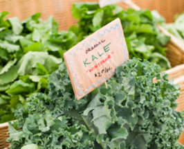 Queen of Greens: The Kale Obsession