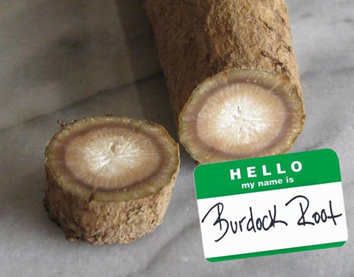 Superfood Spotlight: Burdock Root