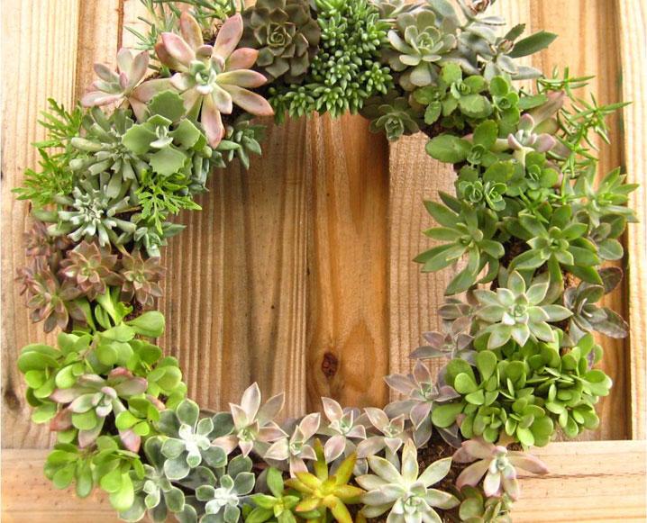 Make It By Monday: Succulent Wreath