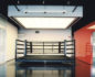 In The Ring: Aerospace NYC