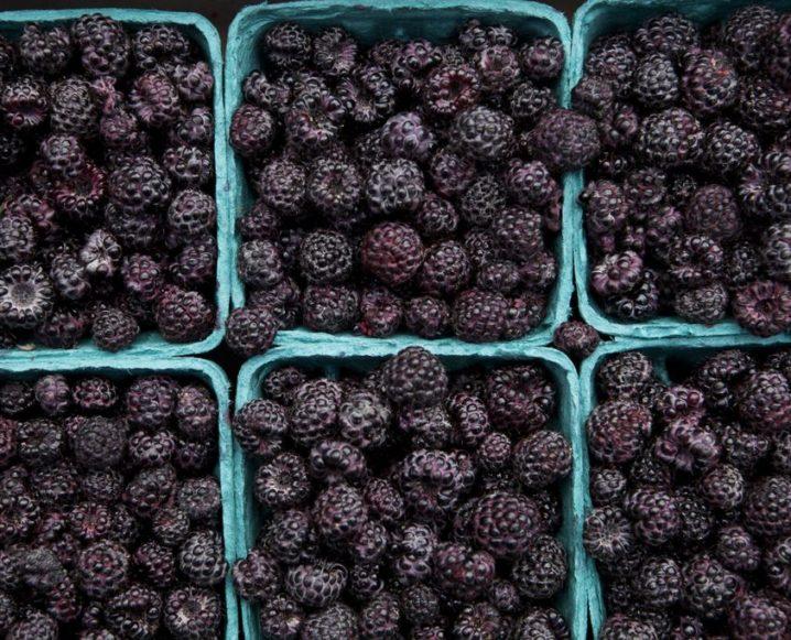 Superfood Spotlight: Blackberries
