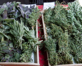how to use fresh herbs cooking with fresh herbs guide
