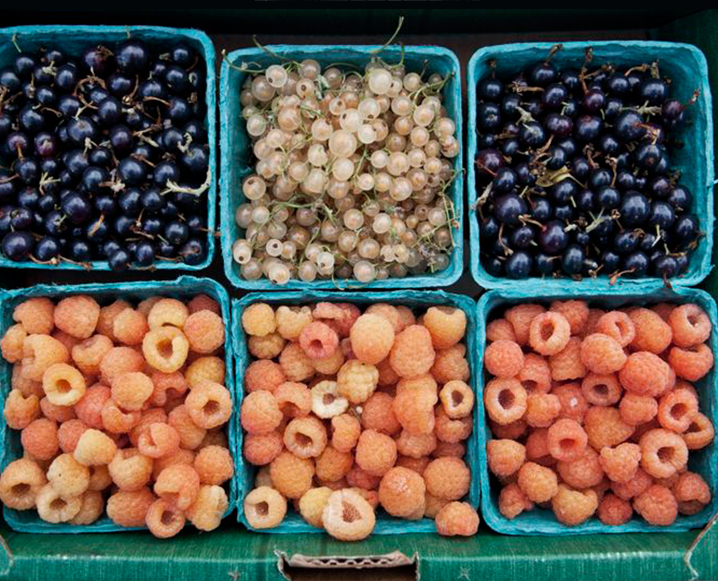Healthy Hit List: Summer Fruits in L.A.