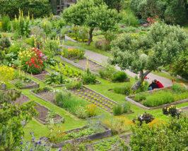 Organic Garden Tour: An Eco-Resort On the Mendocino Coast