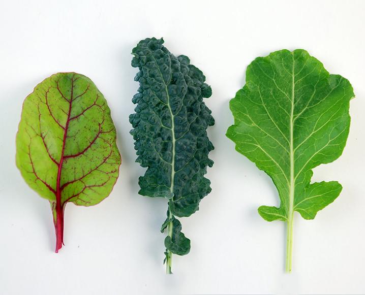 ANDI Score System nutrient density