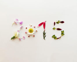 your resolutions 2015