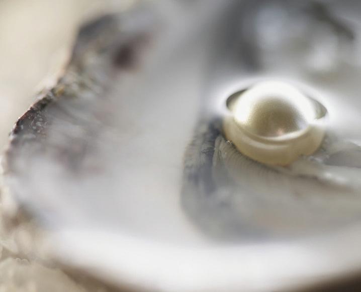 Superfood Spotlight: Pearl Powder