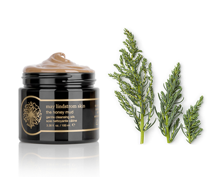Succulents And Seaweed: 9 Beauty Ingredients To Change Your Skin
