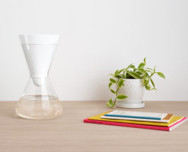 Detox Your Office: 11 Steps To A More Vibrant Workplace