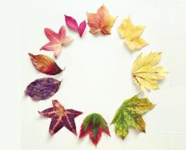 The Foraged Tablescape: DIY Fall Leaf Lanterns You'll Love