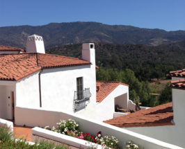TCM Weekend: A Day of Wellness In Ojai