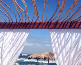 The Mexi-gram: Our Foodie Flashback From An Exotic Mexican Resort