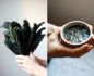 Split photo of a pair of hands holding a bunch of black cabbage on the left and then holding a small bowl of pesto on the right
