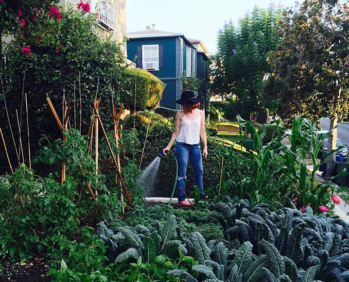 gardening in an apartment