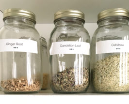 herbal infusions ashley neese
