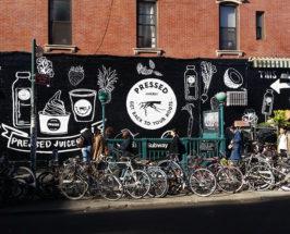 deerdana mural in brooklyn