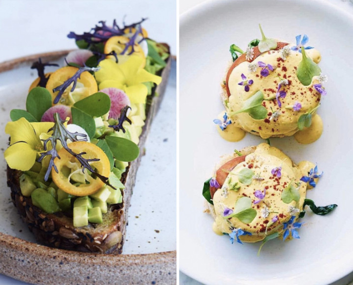 Split photo of 2 vegan brunch dishes from Plant Food & Wine with avocado toast on the left and eggs Benedict on the right