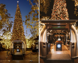 How To Make The Spiked Cider From Our Holiday Party At The Grove