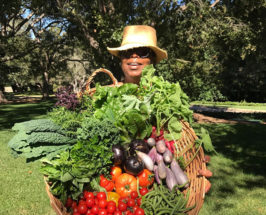 Oprah Winfrey wearing a sun hat and sunglasses carrying a big basket of vegetables in a farm background