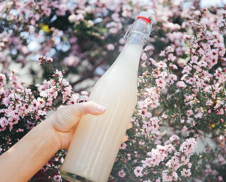Coconut Water Kefir