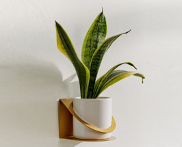planters for small spaces