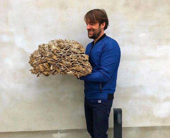 chef rene redzepi the noma guide to fermentation