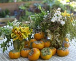 Raise A Glass: Rosemary Rosé Sangria For Thanksgiving