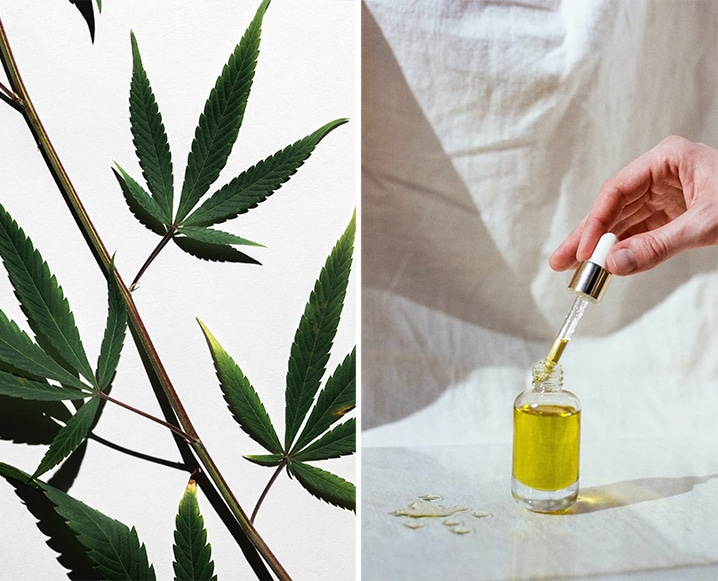 The Smart Girl's Guide: 10 Mistakes To Avoid When Shopping for CBD