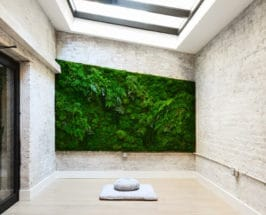 Decorate With Moss wall MNDFL
