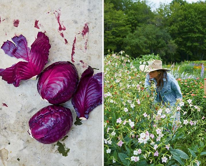 Lauri Kranz edible garden la