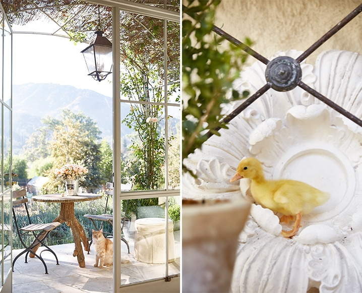 Here's What Life is Really Like On Patina Farm In Ojai California
