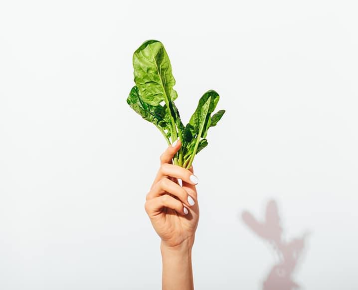 best metabolism boosting foods
