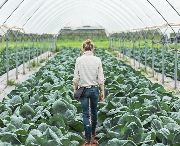 Regenerative Agriculture 101