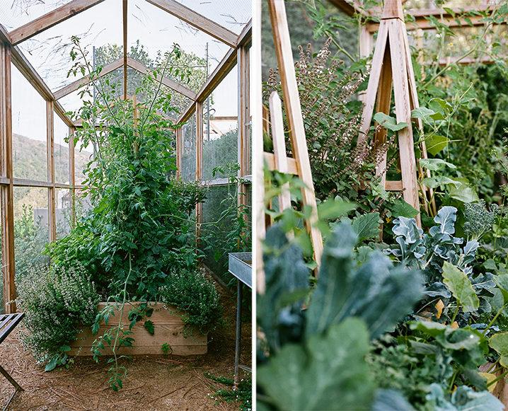 edible garden greenhouse