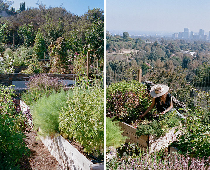 edible gardens in la