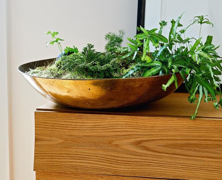 DIY moss bowl