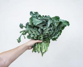 dr sarah gottfried holding greens