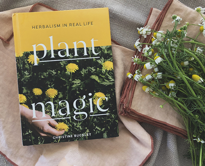 Plant Magic: Basically, Our New Hobby For the Year